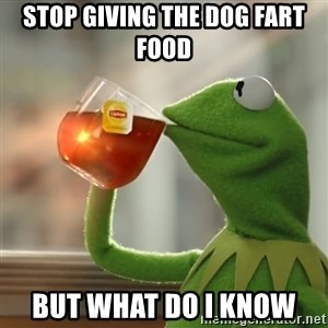Kermit The Frog Drinking Tea - Stop giving the dog fart food But what do I know