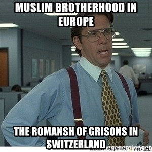That would be great - Muslim Brotherhood in Europe  The Romansh of Grisons in Switzerland