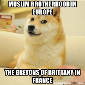 so doge - Muslim Brotherhood in Europe  The Bretons of Brittany in France