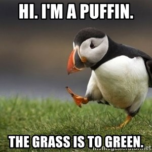 Unpopular Opinion Puffin - Hi. I'm a puffin. The grass is to green.