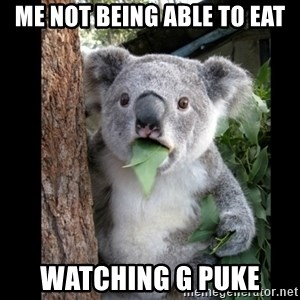 Koala can't believe it - Me not being able to eat watching g puke