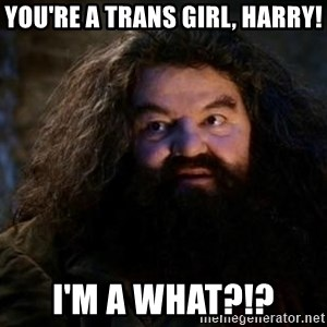 Yer A Wizard Harry Hagrid - You're a trans girl, Harry! I'm a what?!?