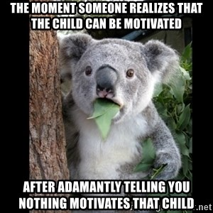 Koala can't believe it - The moment someone realizes that the child can be motivated After adamantly telling you nothing motivates that child