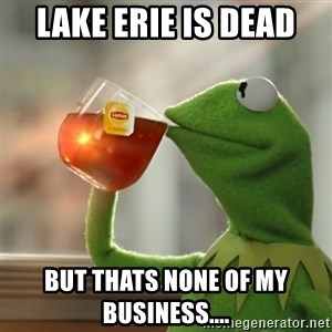 Kermit The Frog Drinking Tea - Lake Erie is dead but thats none of my business....