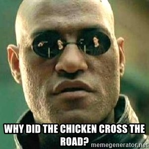 What if I told you / Matrix Morpheus - Why did the chicken cross the road?