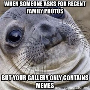 Awkward Moment Seal - When someone asks for recent family photos But your gallery only contains memes
