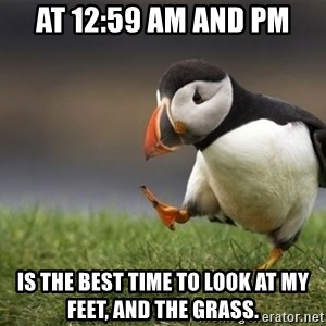 Unpopular Opinion Puffin - AT 12:59 AM AND PM Is the best time to look at my feet, and the grass.