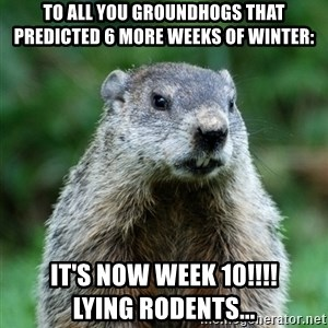 grumpy groundhog - To all you groundhogs that predicted 6 more weeks of winter:  It's now WEEK 10!!!!           Lying rodents...