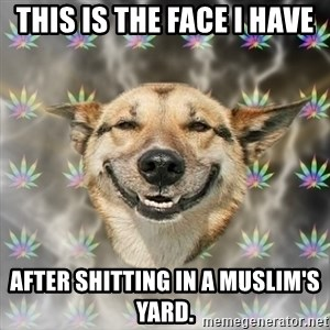 Stoner Dog - This is the face I have After shitting in a Muslim's yard.