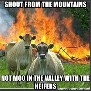 Evil Cows - shout from the mountains not moo in the valley with the heifers