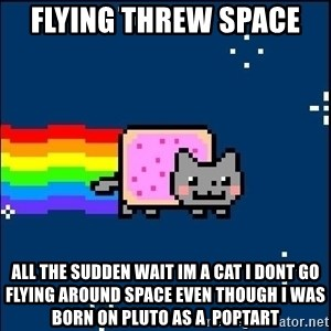 Irresponsible Nyan Cat - FLYING THREW SPACE  ALL THE SUDDEN WAIT IM A CAT I DONT GO FLYING AROUND SPACE EVEN THOUGH I WAS BORN ON PLUTO AS A  POPTART