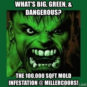 Hulk SMASH - what's big, green, & dangerous? the 100,000 sqft mold infestation @ millercoors!