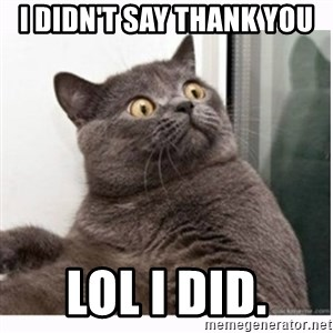 Conspiracy cat - I didn't say thank you  Lol I did.