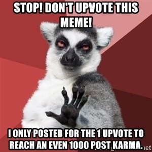 Chill Out Lemur - Stop! Don't upvote this meme! I only posted for the 1 upvote to reach an even 1000 post karma.