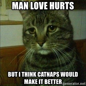 Depressed cat 2 - Man love hurts  But I think catnaps would make it better