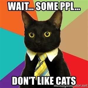 Business Cat - Wait... Some ppl...  Don't Like CATS