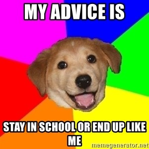 Advice Dog - my advice is  stay in school or end up like me