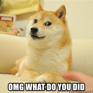so doge - omg what do you did