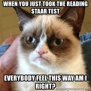 Grumpy Cat  - When you just took the reading staar test Everybody feel this way am i right?