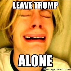 Leave Brittney Alone - Leave trump alone