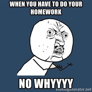 Y U No - when you have to do your  homework No whyyyy