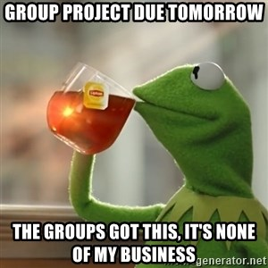 Kermit The Frog Drinking Tea - group project due tomorrow  the groups got this, it's none of my business