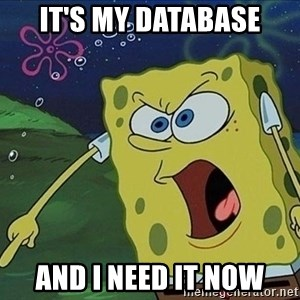Screaming Spongebob - IT'S MY DATABASE AND I NEED IT NOW