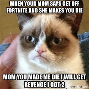Grumpy Cat  - when your mom says get off fortnite and she makes you die mom you made me die i will get revenge i got 2