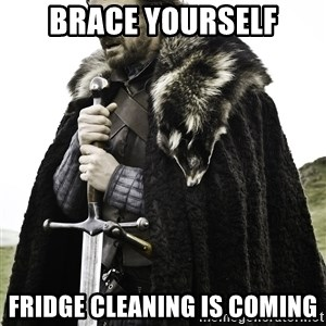 Sean Bean Game Of Thrones - brace yourself fridge cleaning is coming