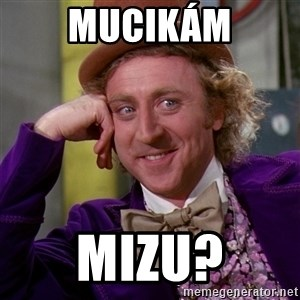 Willy Wonka - Mucikám Mizu?