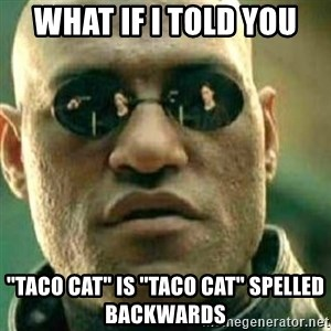 """What If I Told You - WHat if I told you  ''taco cat"""" is ''taco cat"""" spelled backwards"""