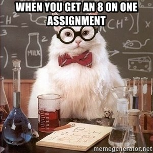 Chemistry Cat - When you get an 8 on one assignment