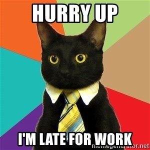 Business Cat - hurry up i'm late for work