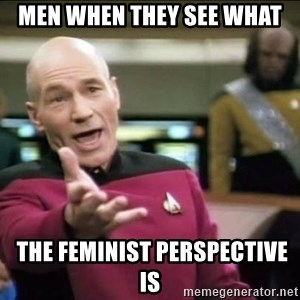 Why the fuck - Men when they see what  the feminist perspective is