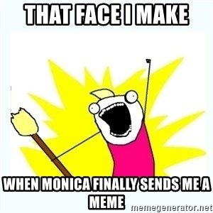 All the things - That face I make  When Monica finally sends me a meme