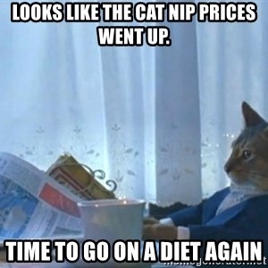 Sophisticated Cat - looks like the cat nip prices went up. time to go on a diet again