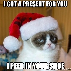 Grumpy Cat Santa Hat - i got a present for you i peed in your shoe