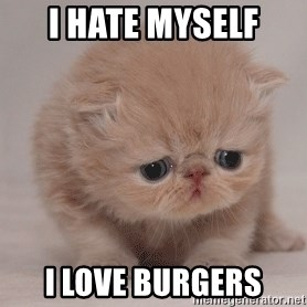 Super Sad Cat - i hate myself i love burgers