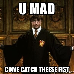 Harry Potter Come At Me Bro - u mad come catch theese fist