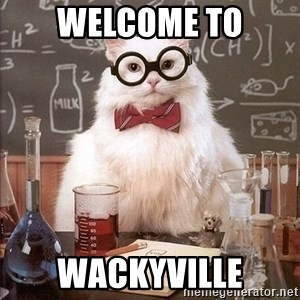 Chemistry Cat - WELCOME TO WACKYVILLE