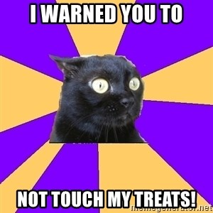 Anxiety Cat - I warned you to not touch my treats!