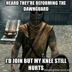 skyrim whiterun guard - HEARD THEY'RE REFORMING THE DAWNGUARD I'd join but my knee still hurts