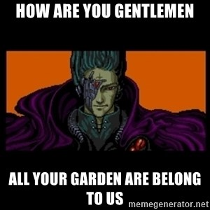 All your base are belong to us - How are you gentlemen all your garden are belong to us
