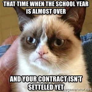 Grumpy Cat  - That time when the school year is almost over and your contract isn't setteled yet