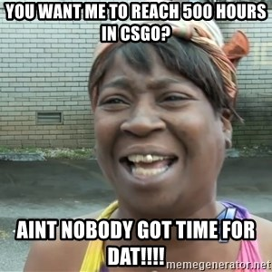 Ain`t nobody got time fot dat - you want me to reach 500 hours in csgo? aint nobody got time for dat!!!!