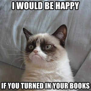 Grumpy cat good - i would be happy if you turned in your books