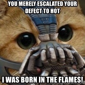 bane cat - You merely escalated your defect to hot I was born in the flames!