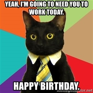 Business Cat - Yeah, I'm going to need you to work today. Happy Birthday.
