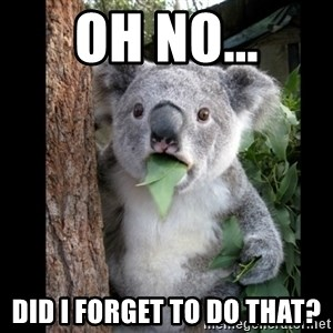 Koala can't believe it - OH NO... DID I FORGET TO DO THAT?