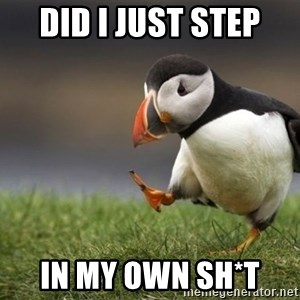 Unpopular Opinion Puffin - did i just step  in my own sh*t